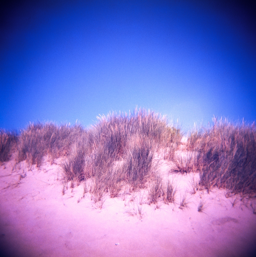 Holga_Lomo_color_slide200_009