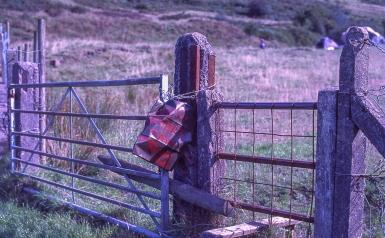 F100-KodakE100GX_024