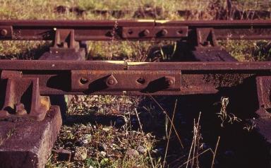 Kodak Elitechrome 100_Pentax Program A_028