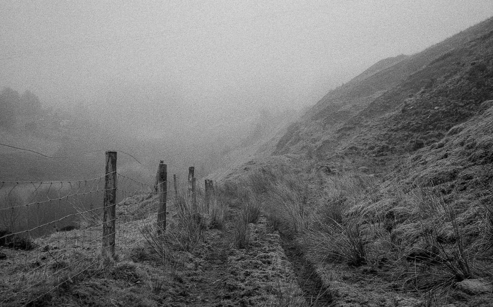 Taking the Leica M2 for a walk in the fog …….