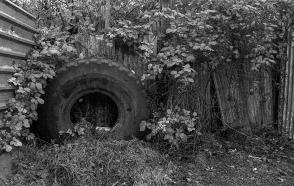 Kodak T-Max 3200_007