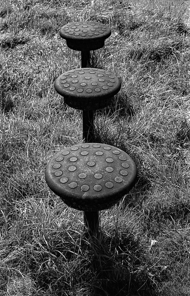 TriX_LeicaM2-010