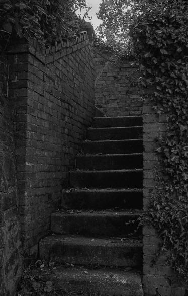 TriX_LeicaM2-019