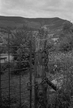 TriX_LeicaM2-027