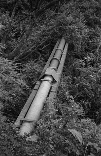 TriX_LeicaM2-030