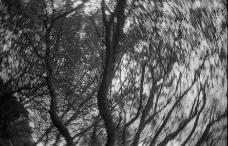 TriX_LeicaM2-031