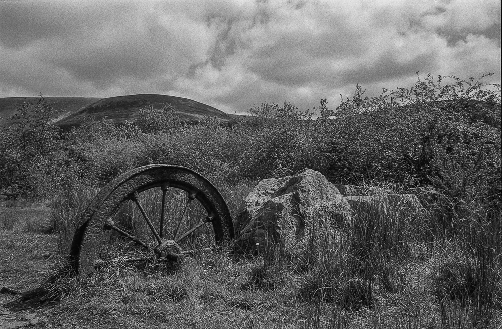 First time shooting Kentmere 400 ..the whole roll ….